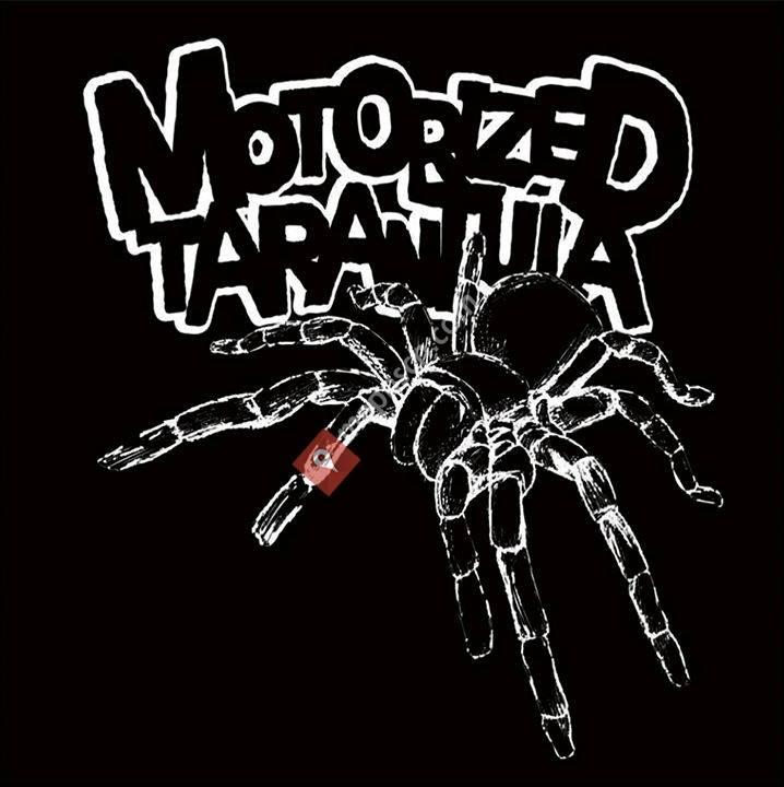 Motorized Tarantula